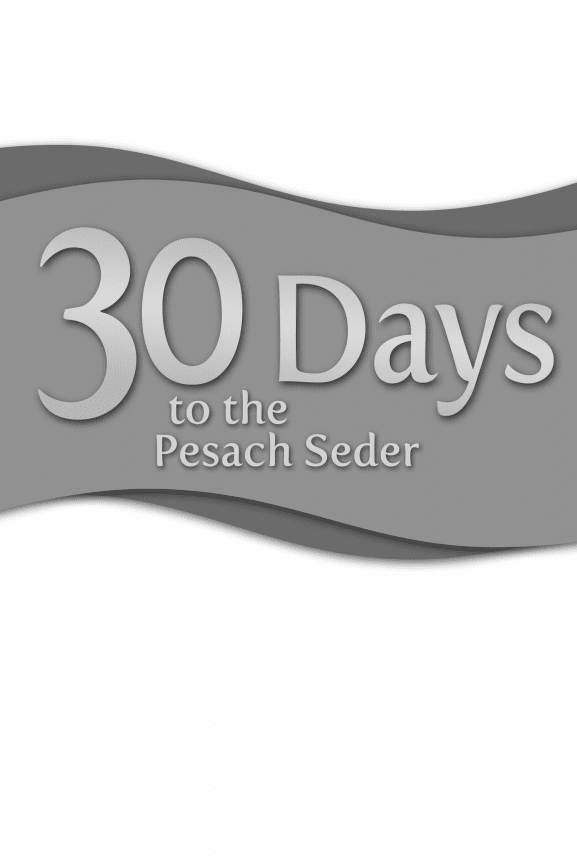 30 Days to the Pesach Seder - Available for Free Download 1