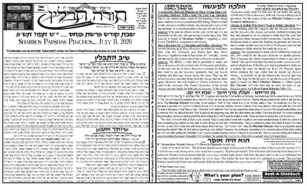Torah Tavlin: Parshas Pinchas 1